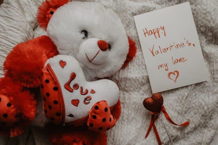 nounours comme cadeau pour la saint-valentin